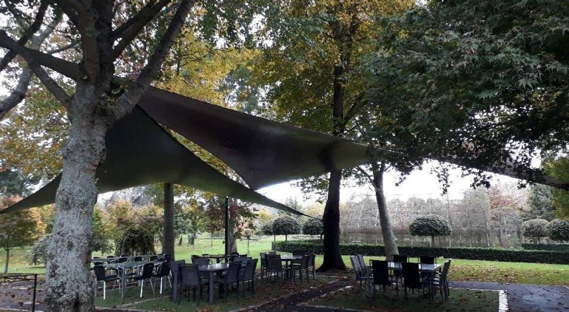 Shade Sails In The Trees